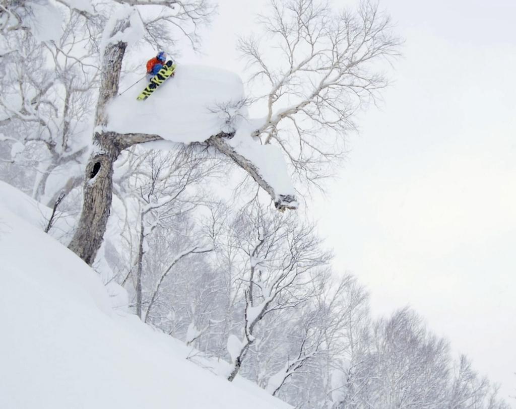 Henrik Windstedt skiing and jumping over tree in Japan, Photographer, filmmaker, Alexander Ryden, skidåking