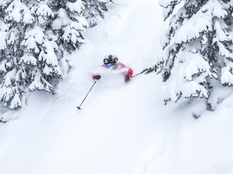 Revellstoke02 Photo @alexanderryden Skier @windstedt